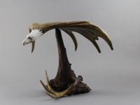 Balancing Eagle 2b