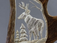 Carved Whitetail in Moose Antler