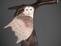 Protector - Barn Owl