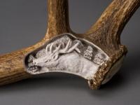 Elk Antler - Detail