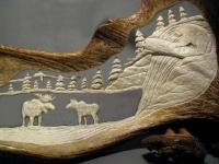 Moose and Bear Detail