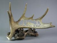 Swamp moose